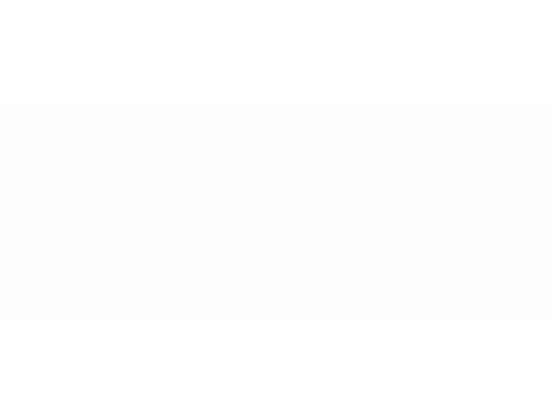 PTNS Projekt